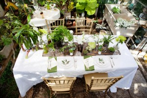 Victorian Era Greenhouse Botanical Garden Wedding Chris Wojdak Photography 3-h